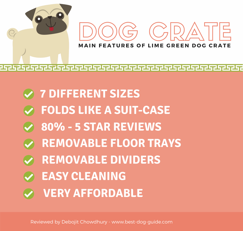 Lime Green Dog Crate InfoGraphic